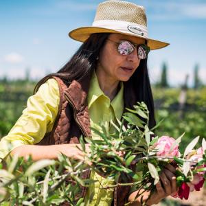 Gabriela Celeste  Winemaker